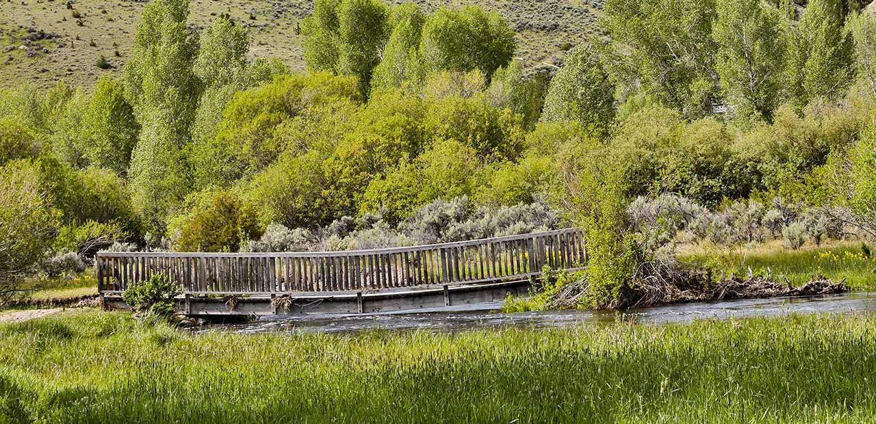 Wooden walking bridge over a creek
